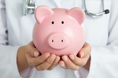 Limited Purpose Flexible Spending Account Piggy Bank